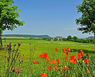Golfresort Gut Ringhofen ©Archiv Tourismusverband_Livia Zimmermann