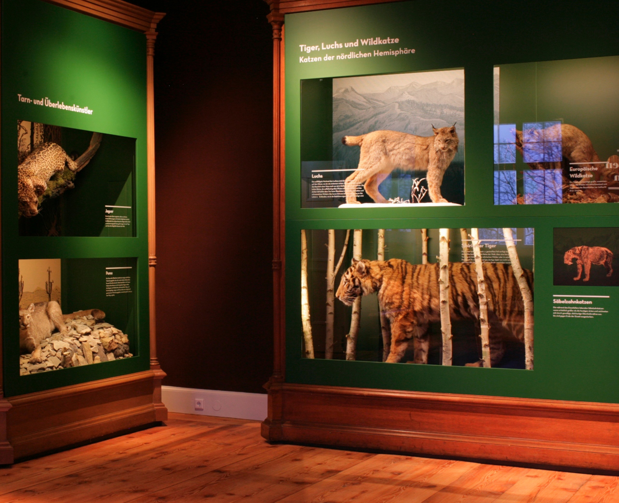 Museum der Natur ©SSFG A.Leeder
